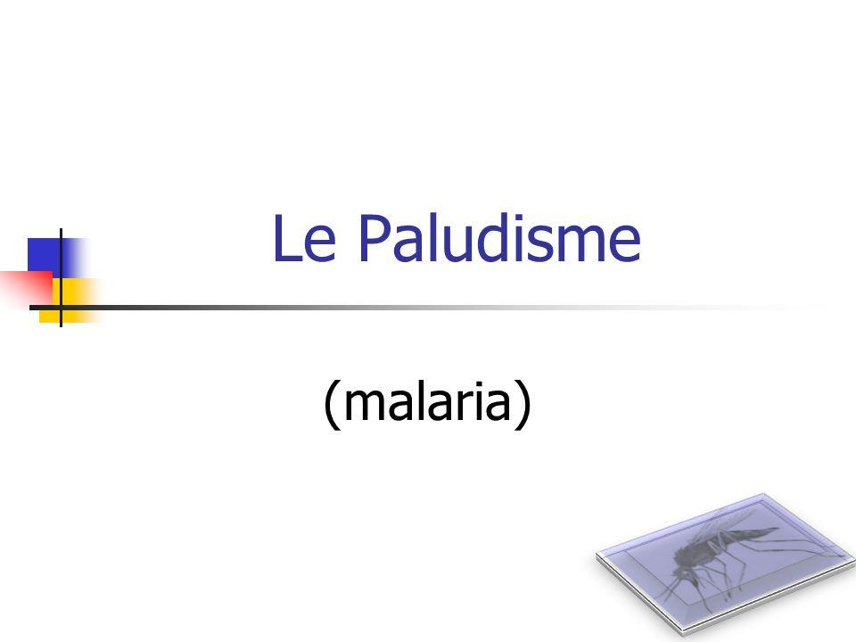 Le Paludisme (malaria)