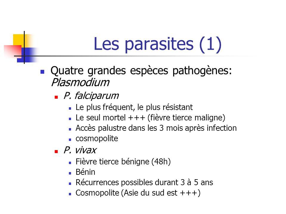 Les parasites (1) Quatre grandes espèces pathogènes: Plasmodium