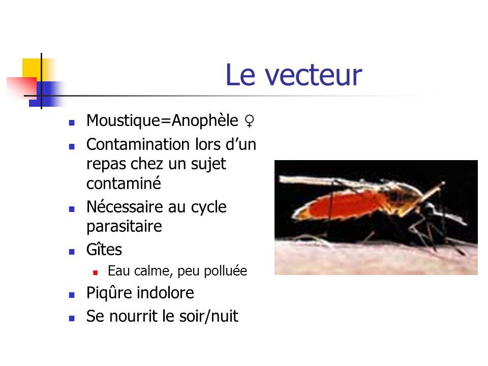 Le vecteur Moustique=Anophèle ♀