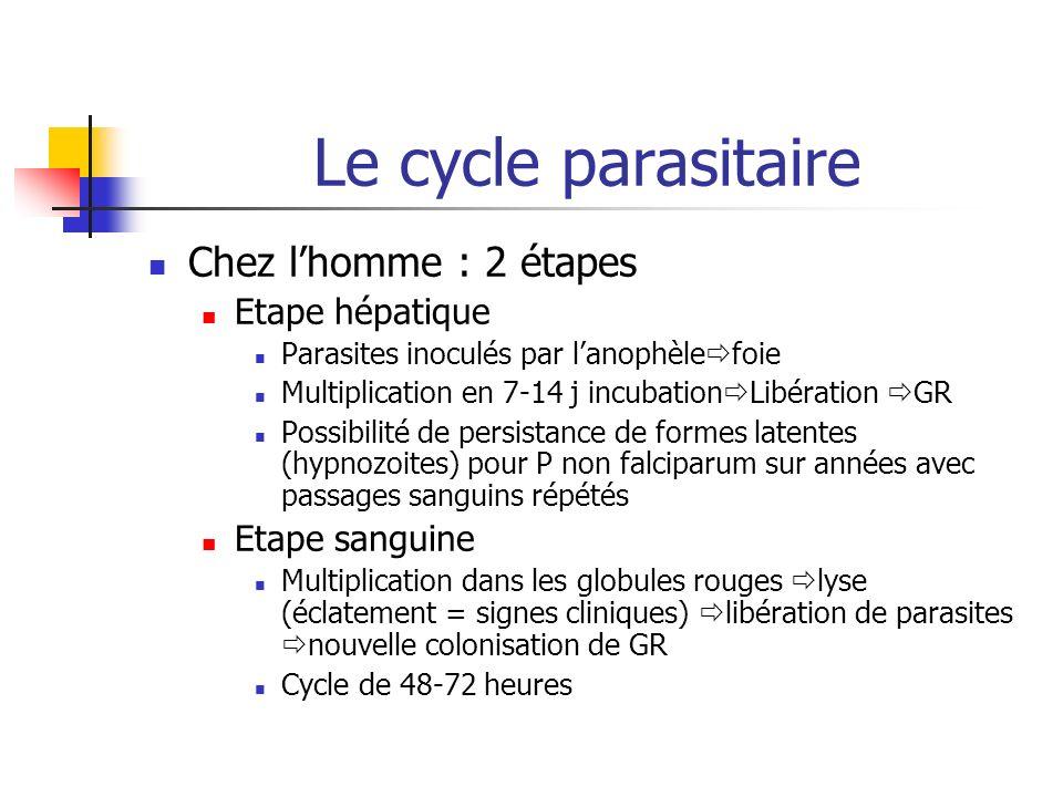 Le cycle parasitaire Chez l'homme : 2 étapes Etape hépatique