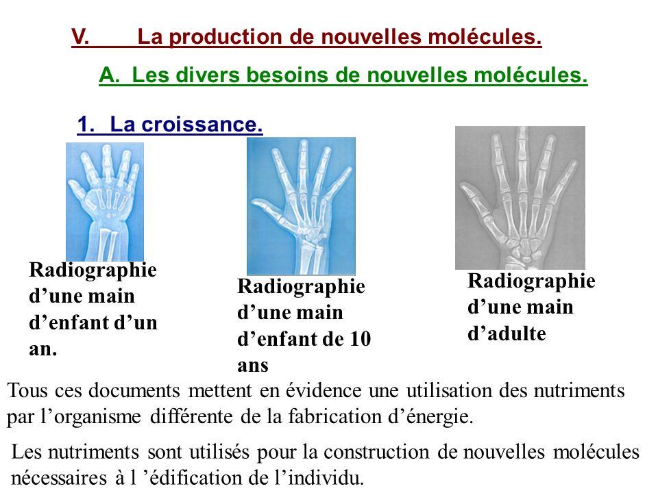 V. La production de nouvelles molécules.