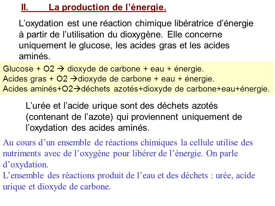 II. La production de l'énergie.