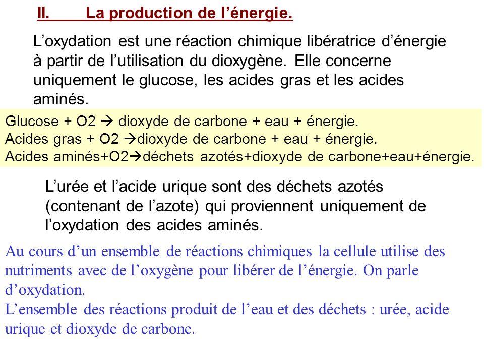 II. La production de l'énergie.