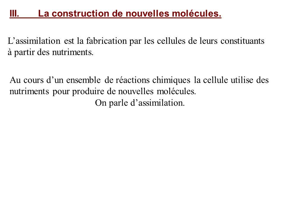 III. La construction de nouvelles molécules.