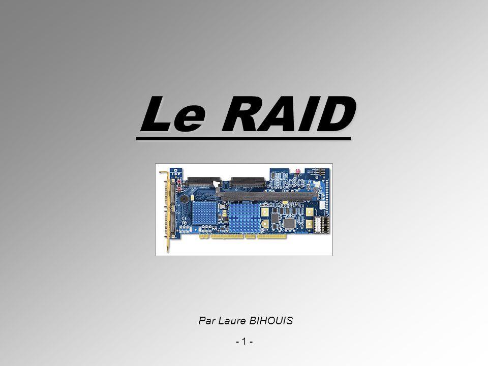 Le RAID Par Laure BIHOUIS - 1 -