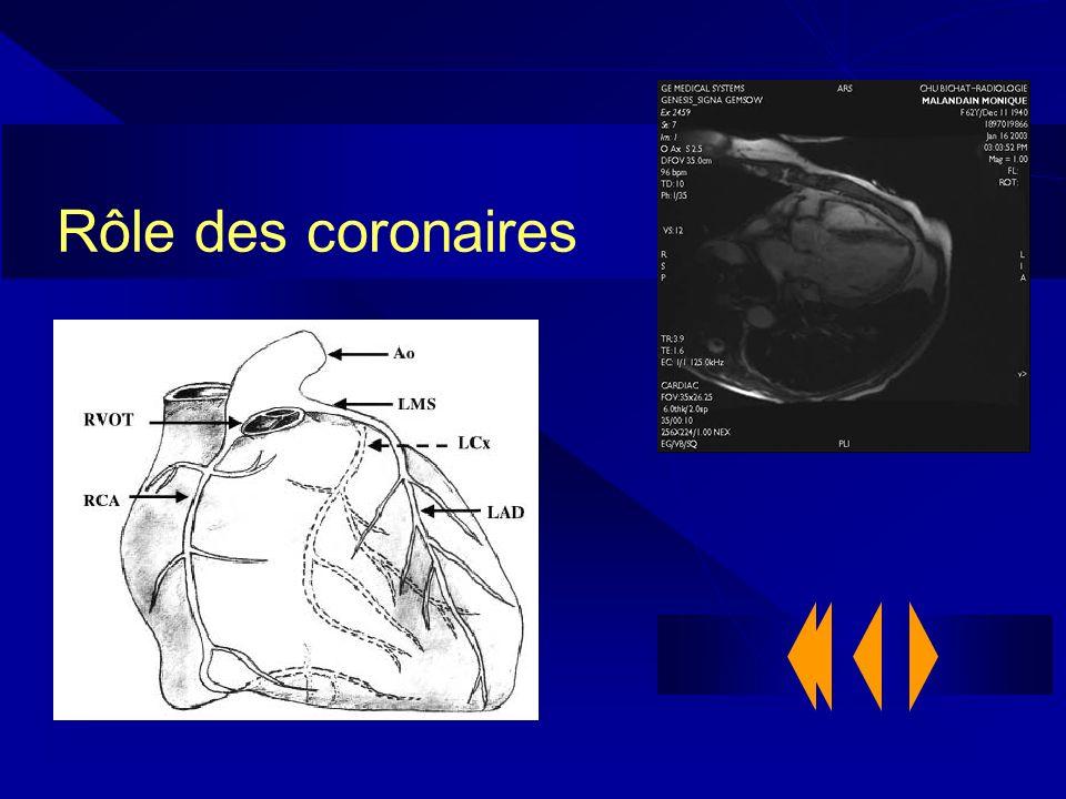 Rôle des coronaires