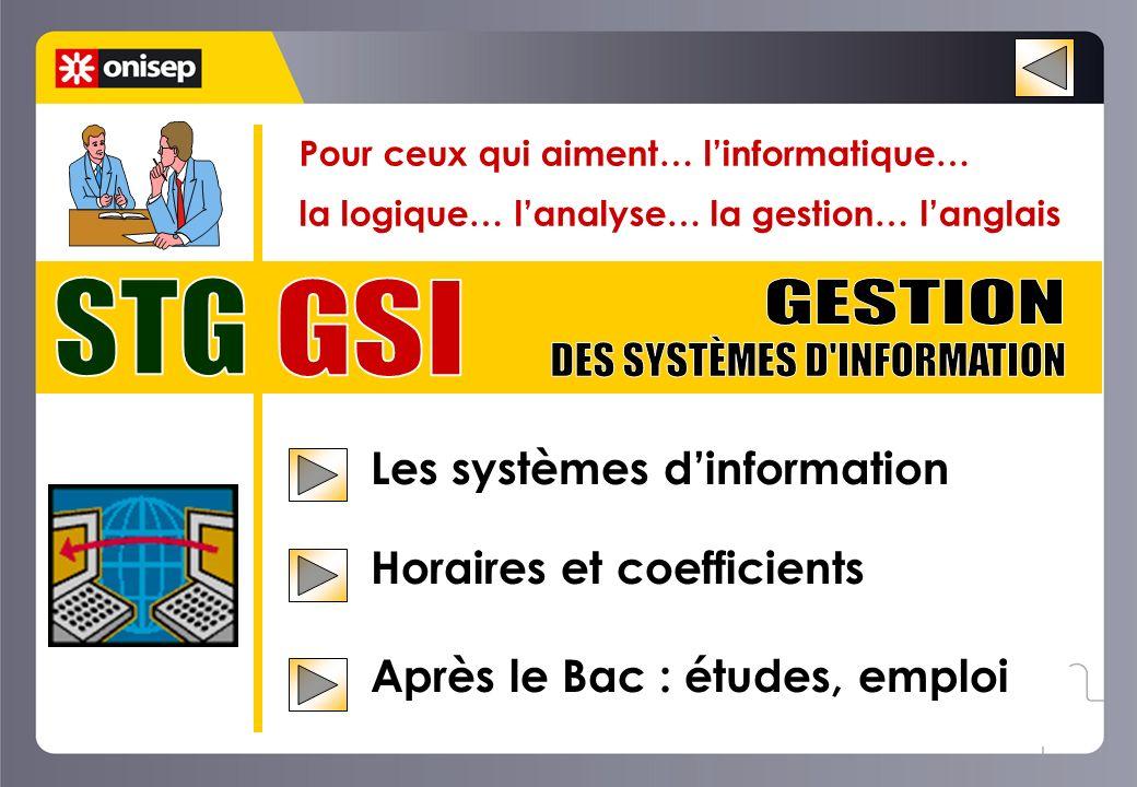 DES SYSTÈMES D INFORMATION