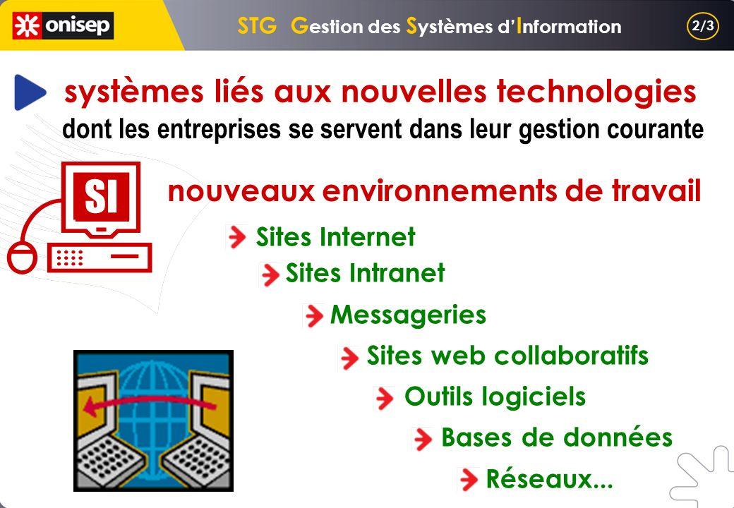 STG Gestion des Systèmes d'Information