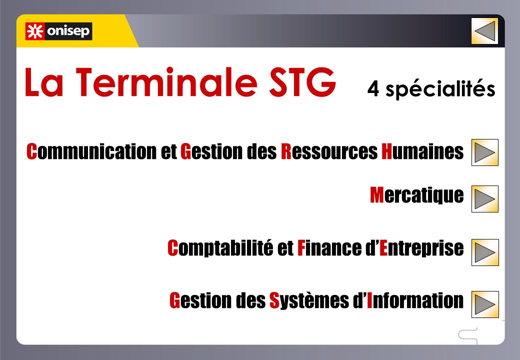 La Terminale STG 4 spécialités