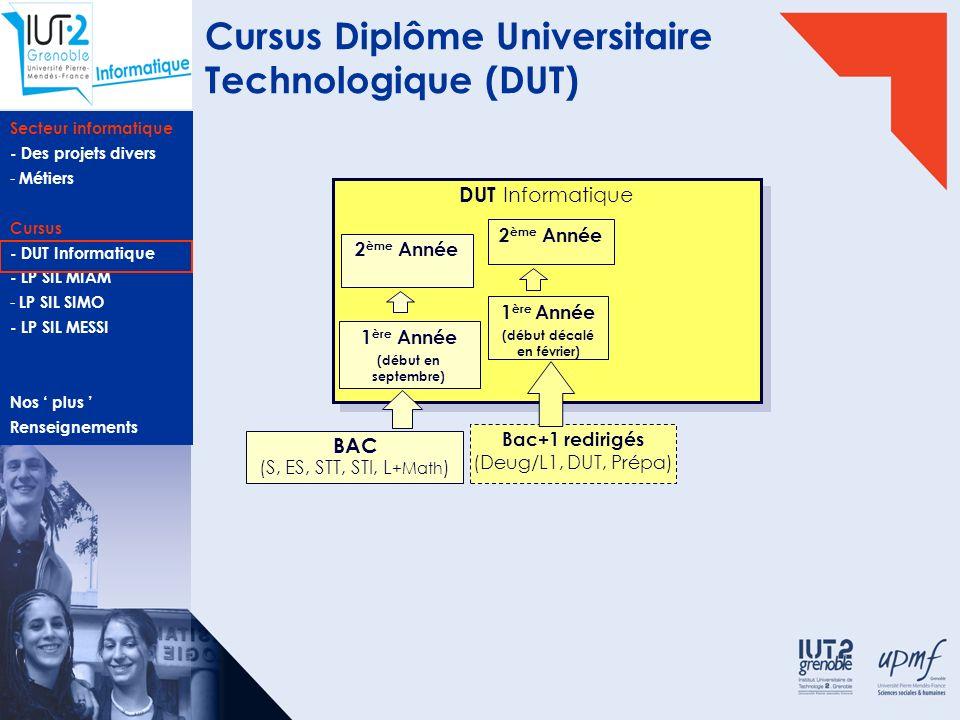 Cursus Diplôme Universitaire Technologique (DUT)