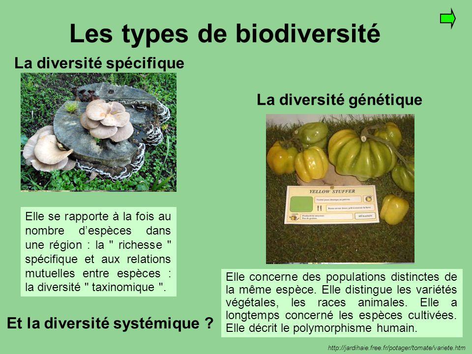 Les types de biodiversité