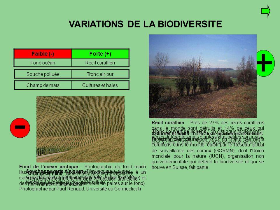 VARIATIONS DE LA BIODIVERSITE