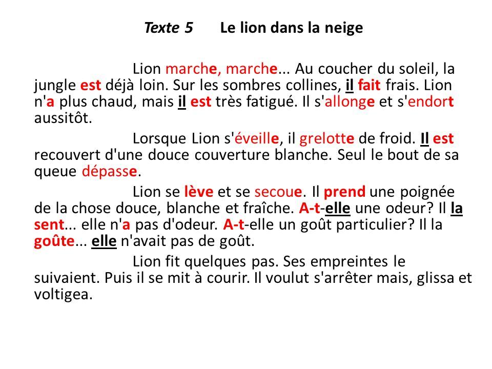 Texte 5 Le lion dans la neige