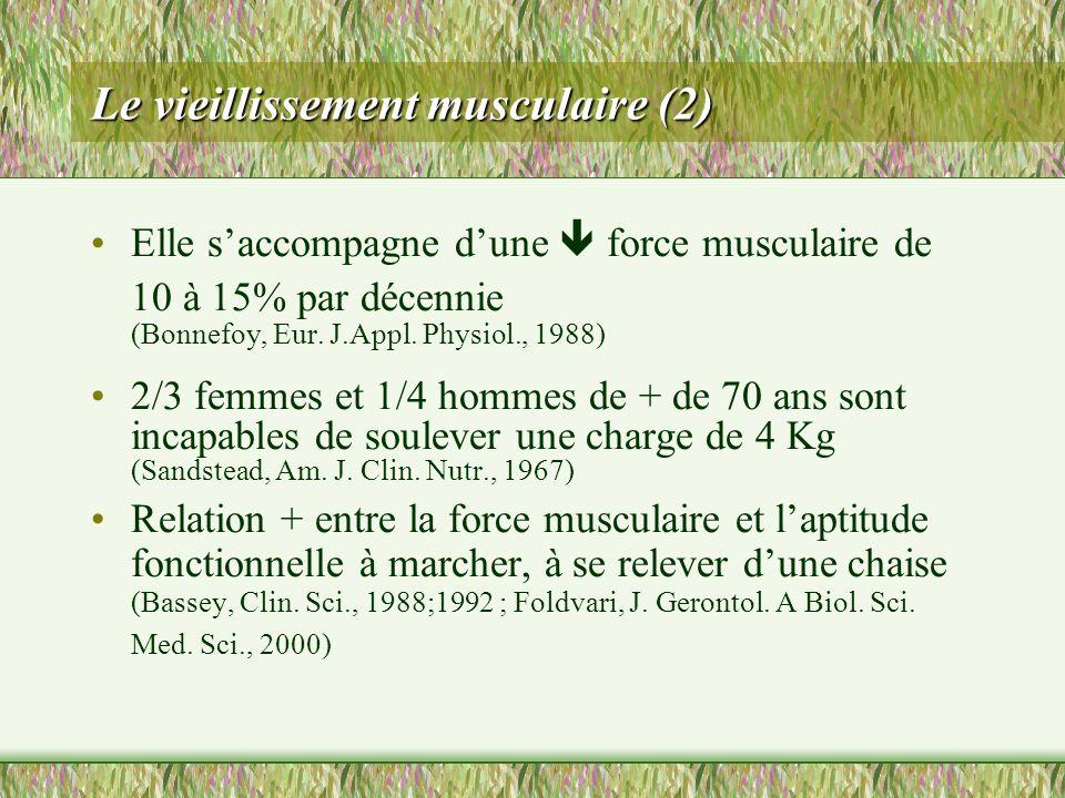Le vieillissement musculaire (2)
