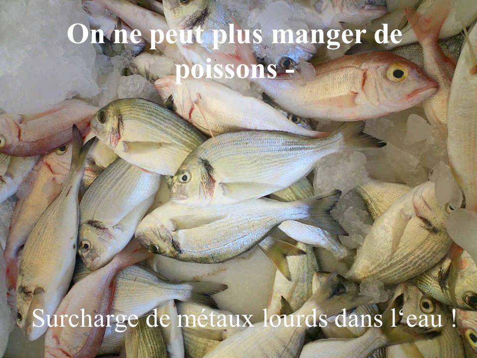 On ne peut plus manger de poissons -