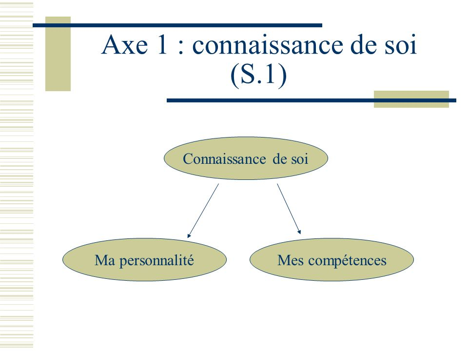 Axe 1 : connaissance de soi (S.1)