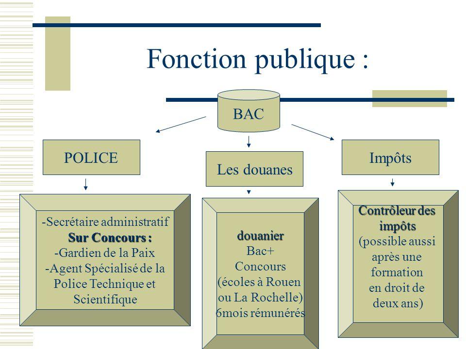 Fonction publique : BAC POLICE Impôts Les douanes Contrôleur des