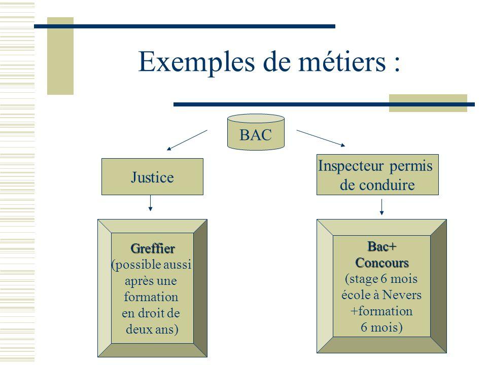 Exemples de métiers : BAC Inspecteur permis Justice de conduire