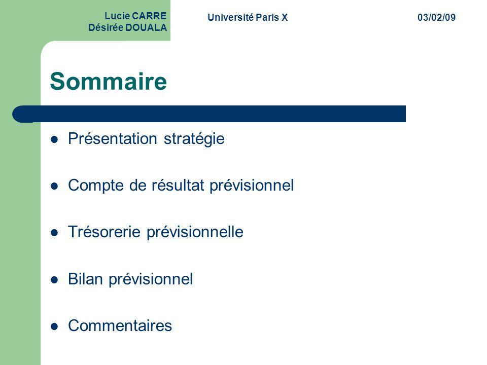 Sommaire Présentation stratégie Compte de résultat prévisionnel