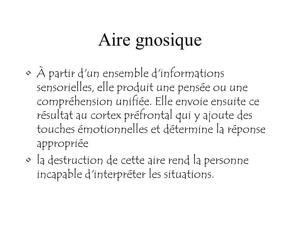 Aire gnosique