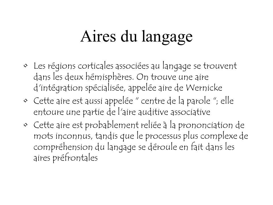 Aires du langage