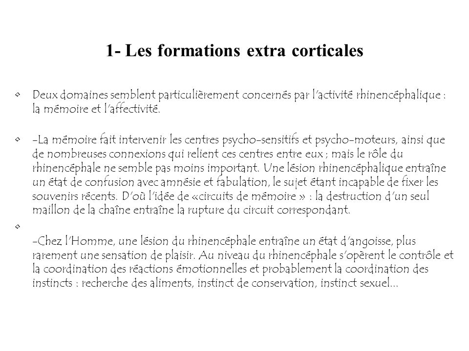 1- Les formations extra corticales