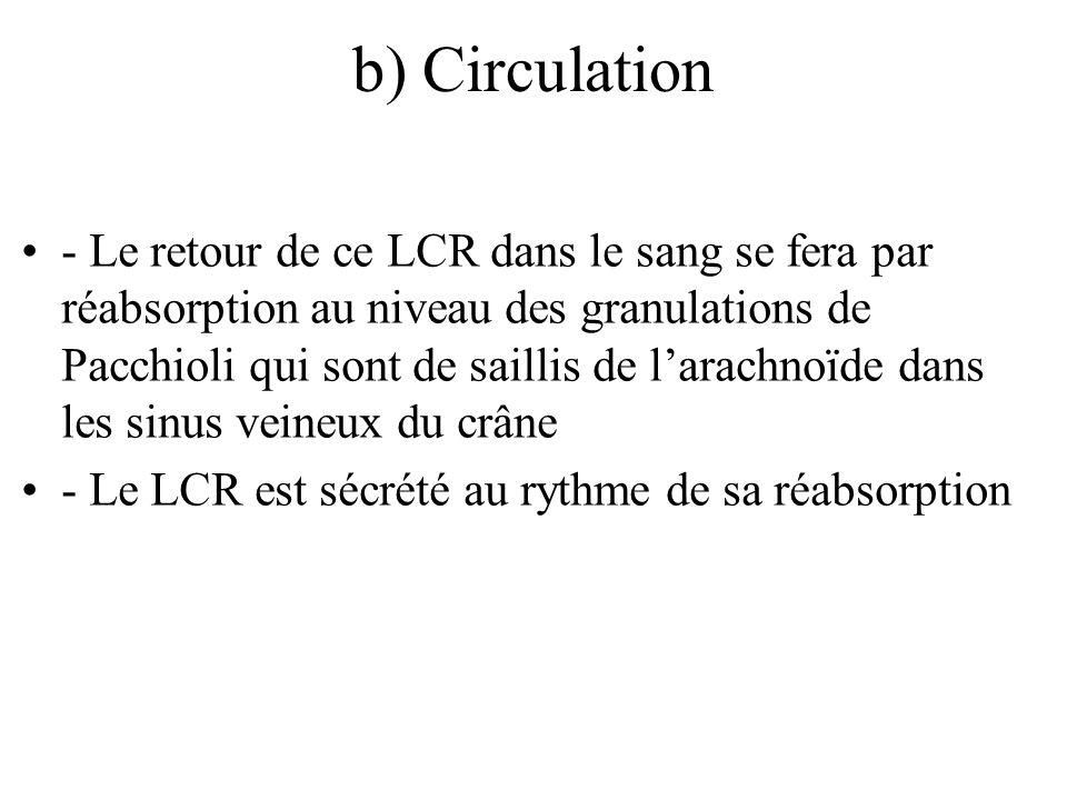 b) Circulation