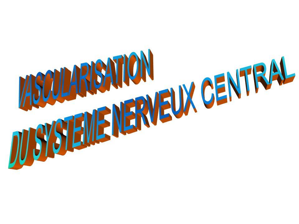 DU SYSTEME NERVEUX CENTRAL