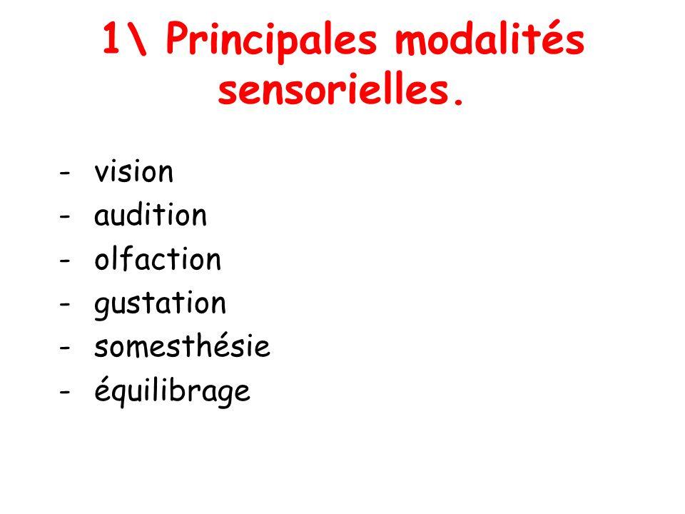 1\ Principales modalités sensorielles.