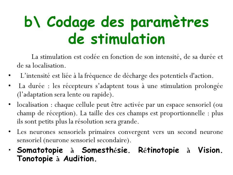 b\ Codage des paramètres de stimulation