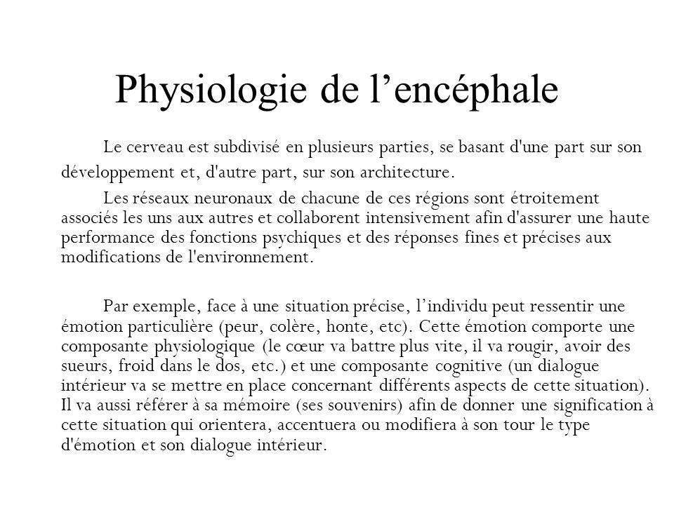 Physiologie de l'encéphale