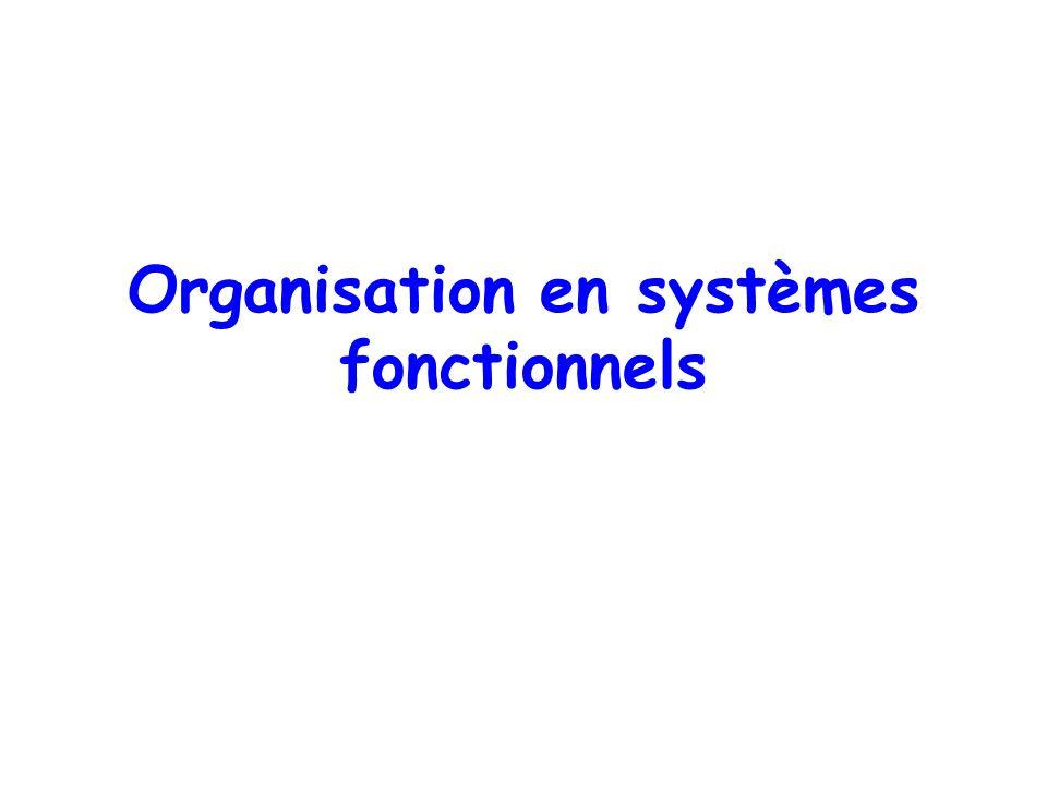 Organisation en systèmes fonctionnels