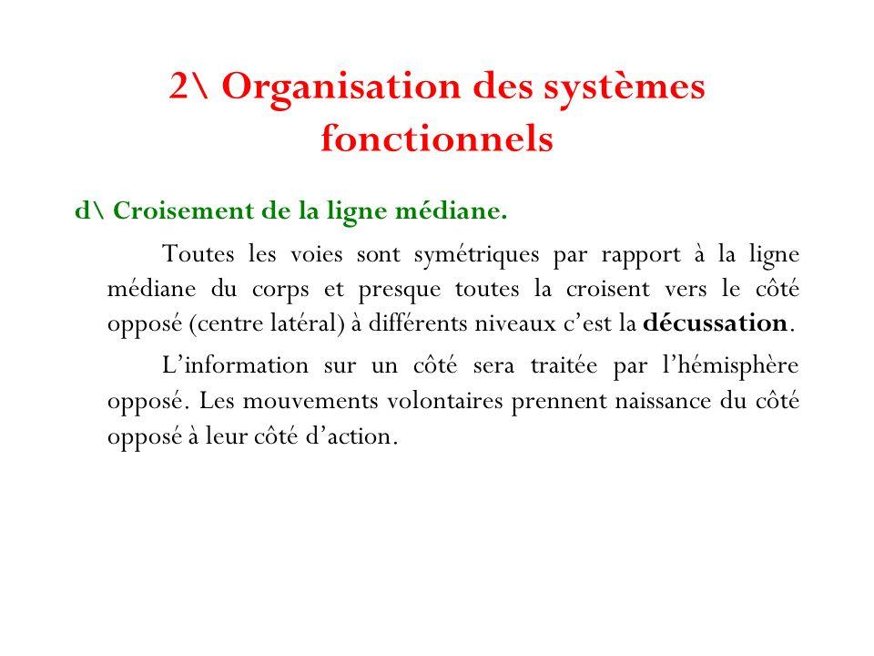 2\ Organisation des systèmes fonctionnels