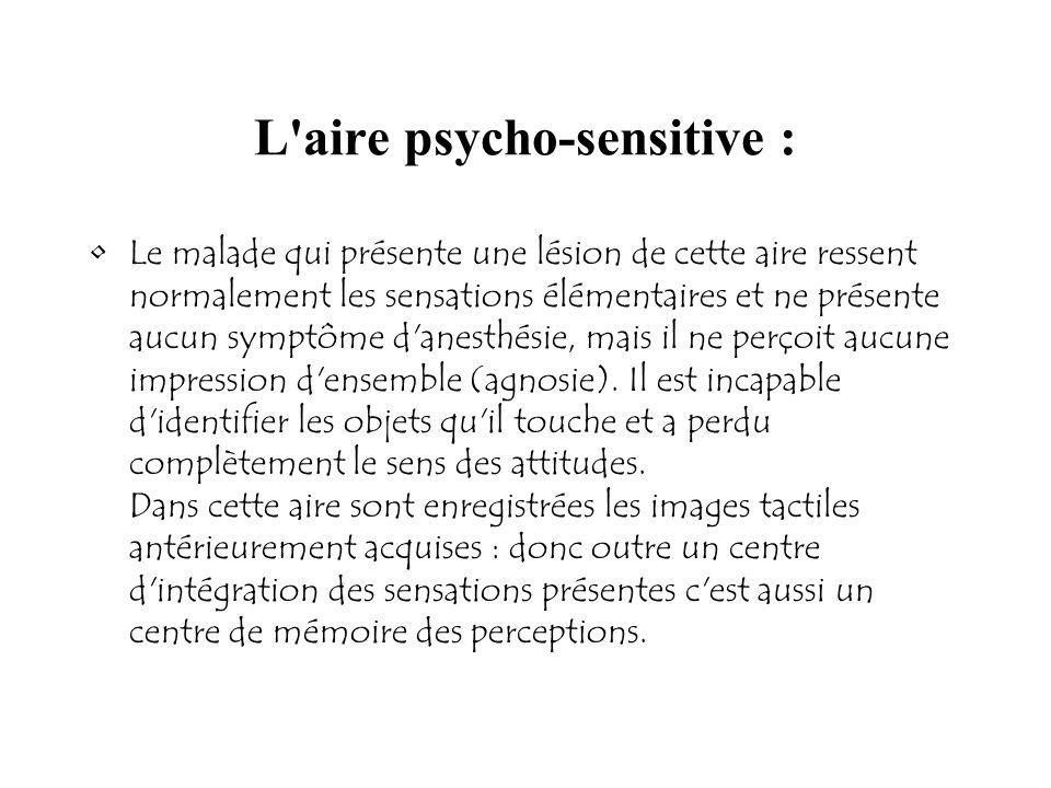 L aire psycho-sensitive :
