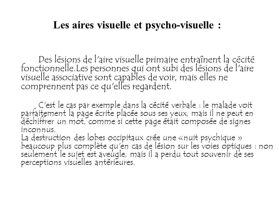 Les aires visuelle et psycho-visuelle :