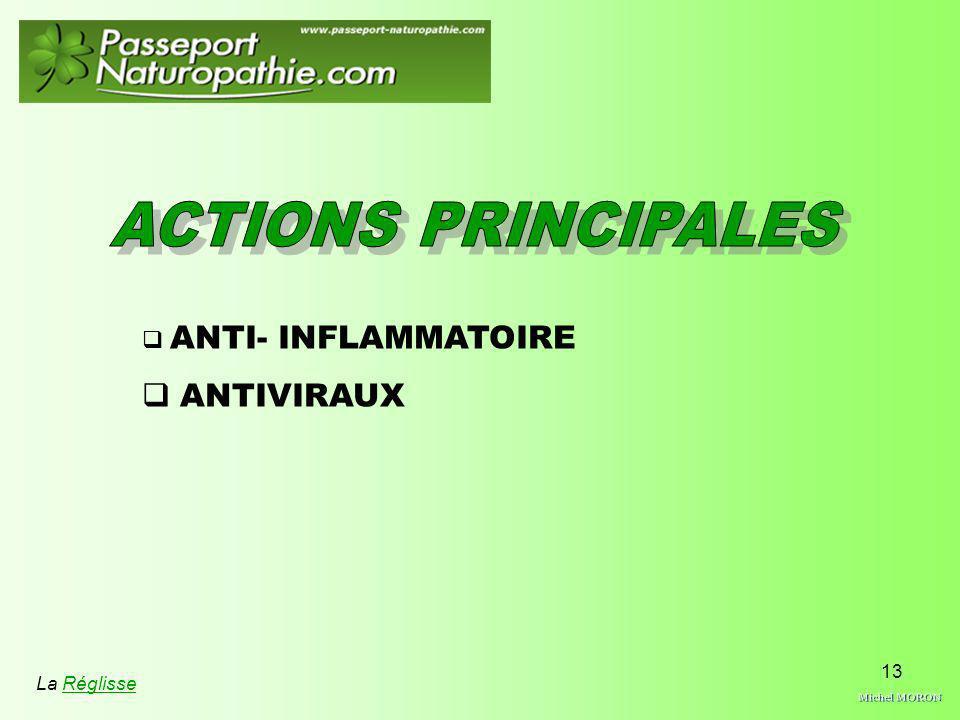 Michel MORON ACTIONS PRINCIPALES ANTIVIRAUX ANTI- INFLAMMATOIRE
