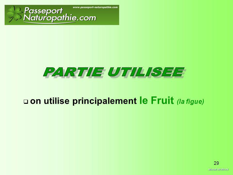 on utilise principalement le Fruit (la figue)