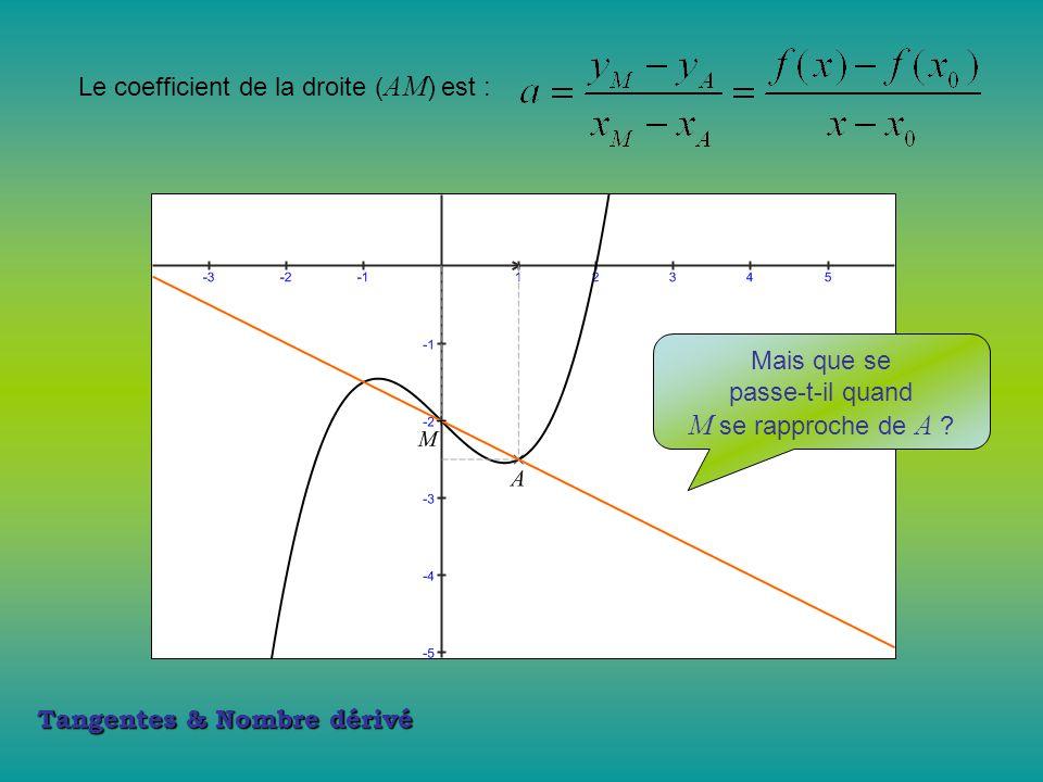 M se rapproche de A Le coefficient de la droite (AM) est :