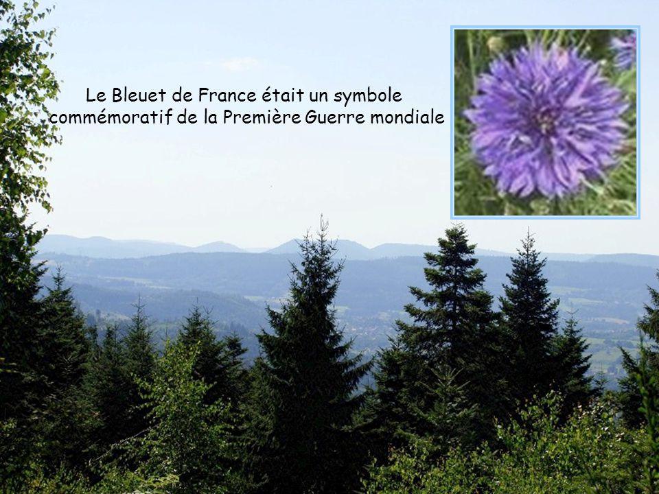 Le Bleuet de France était un symbole