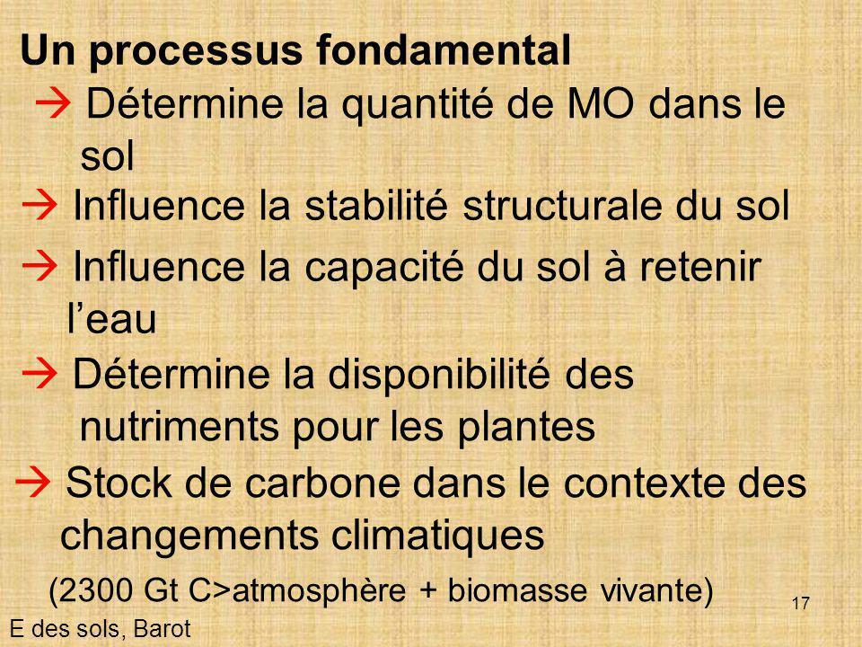 Un processus fondamental  Détermine la quantité de MO dans le sol