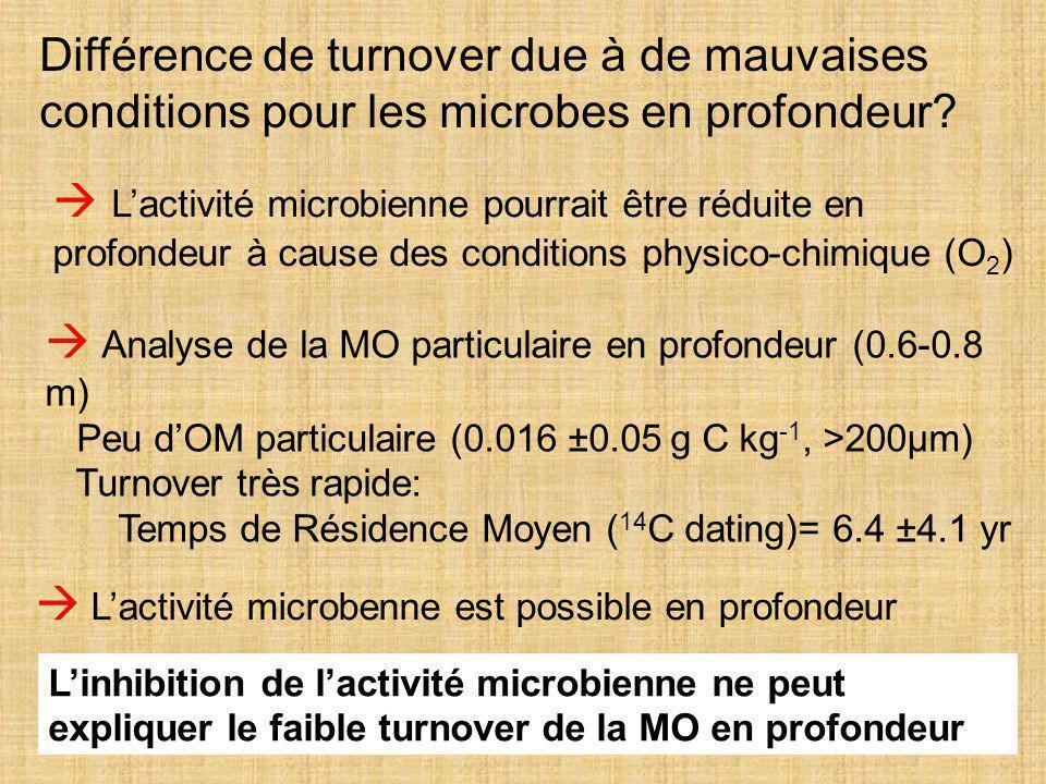  Analyse de la MO particulaire en profondeur (0.6-0.8 m)