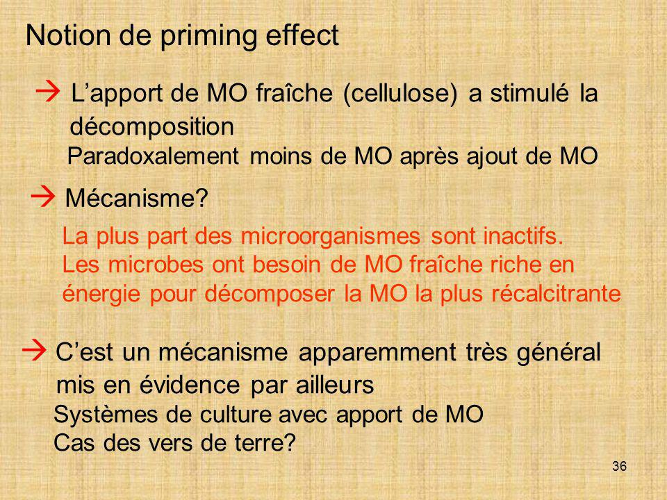 Notion de priming effect