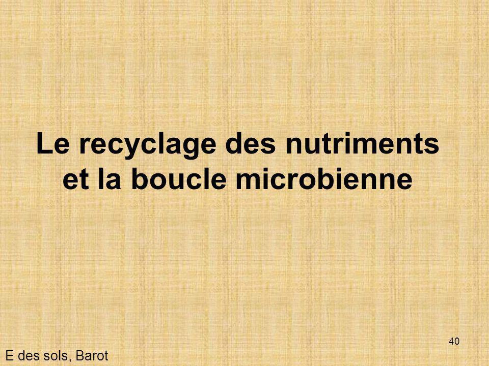 Le recyclage des nutriments et la boucle microbienne