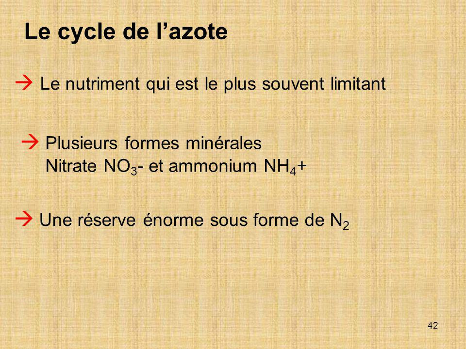 Le cycle de l'azote  Le nutriment qui est le plus souvent limitant