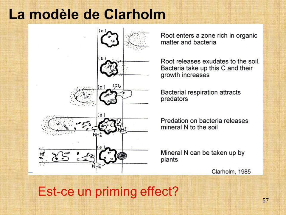 La modèle de Clarholm Est-ce un priming effect