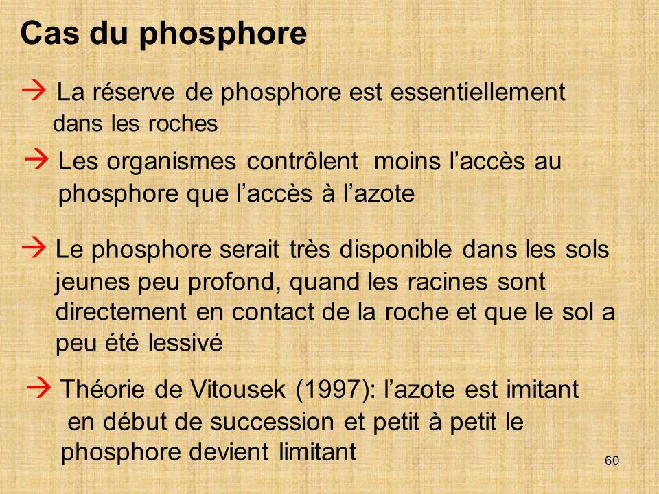 Cas du phosphore  La réserve de phosphore est essentiellement