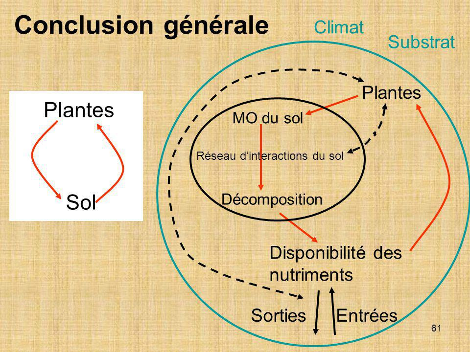 Réseau d'interactions du sol