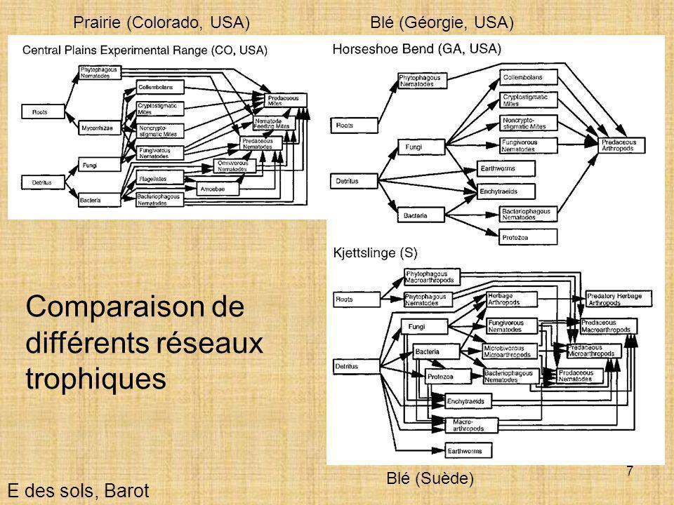 Comparaison de différents réseaux trophiques