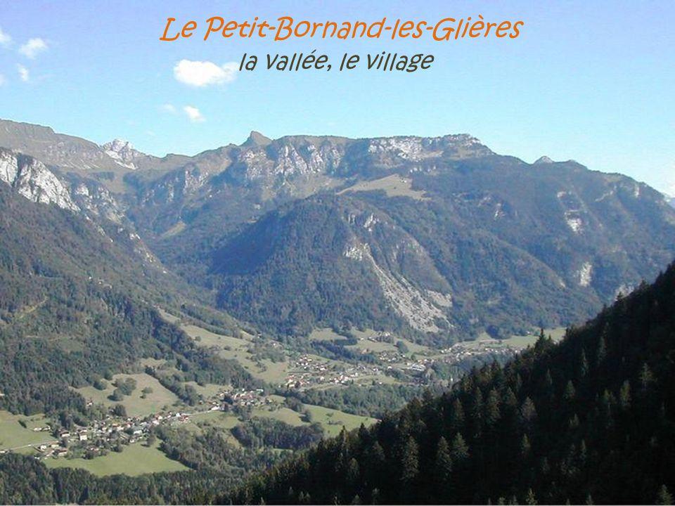 Le Petit-Bornand-les-Glières . la vallée, le village