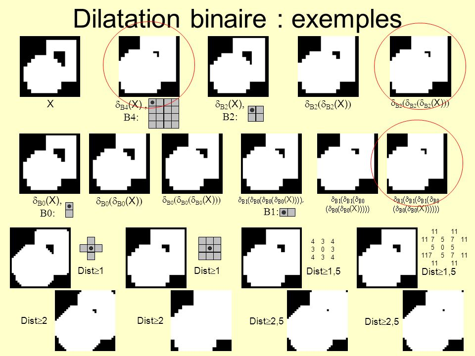 Dilatation binaire : exemples
